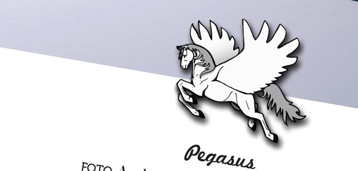 Pegasus – school newspaper
